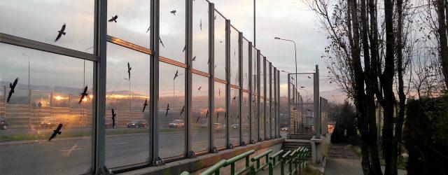 Odpowiedź RDOŚ w Katowicach w sprawie niewłaściwie zabezpieczonych ekranów
